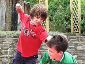 sibling abuse, boys fighting